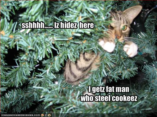 funny-pictures-cat-hides-in-christmas-tree-and-waits